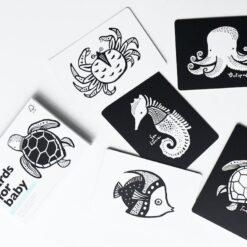 Wee Gallery kartice - Ocean