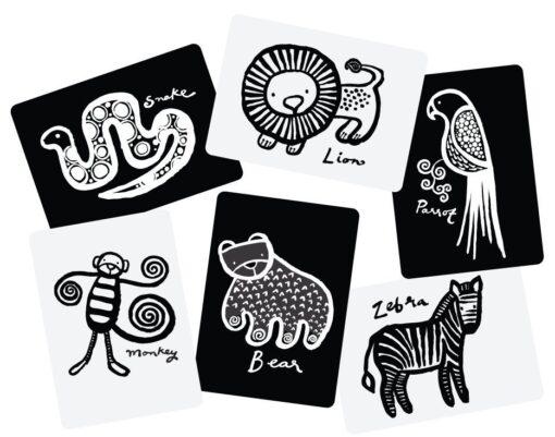 Wee Gallery kartice - Jungle