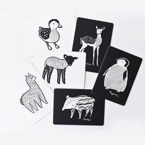 Wee Gallery kartice - Baby Animals