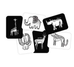 Wee Gallery kartice - Safari